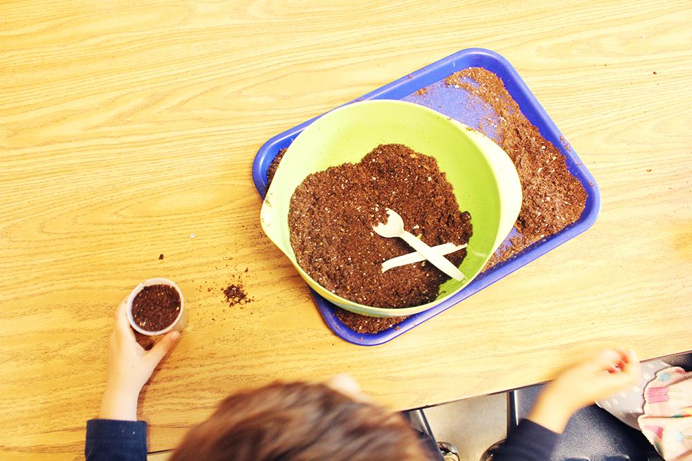 CNS-dirt-planting-seeds