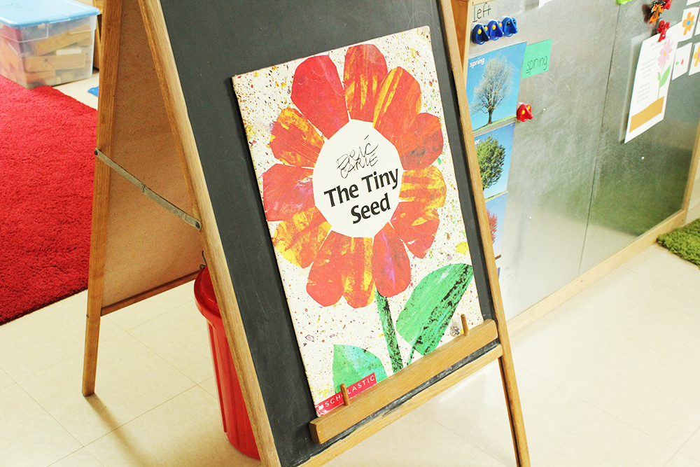 CNS-the-tiny-seed